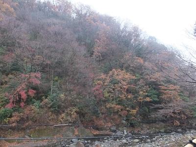 男湯から見た 湯坂山.jpg