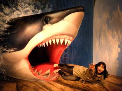 熱海城 トリックアートのサメ.jpg